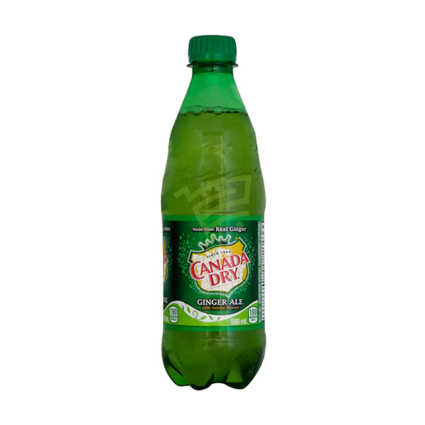 Indian grocery online - Canada Dry Ginger Ale 500Ml - Cartly