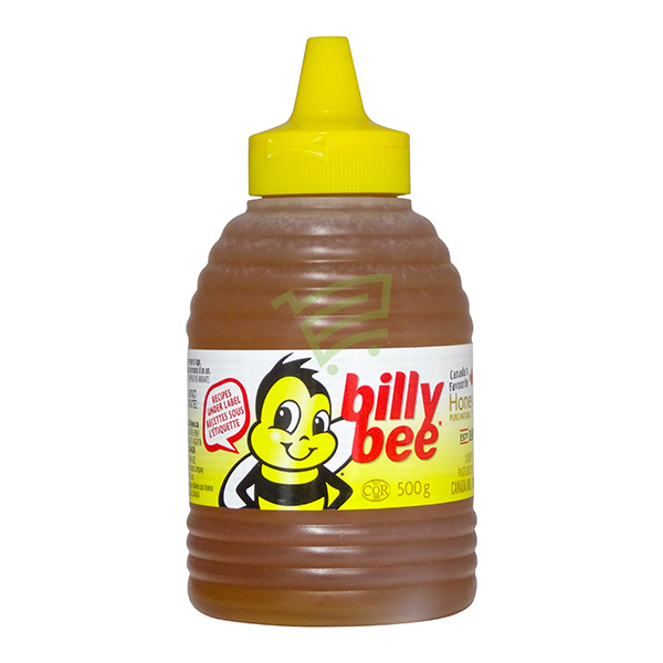 Indian grocery online - Billybee Honey Squeeze 500G - Cartly